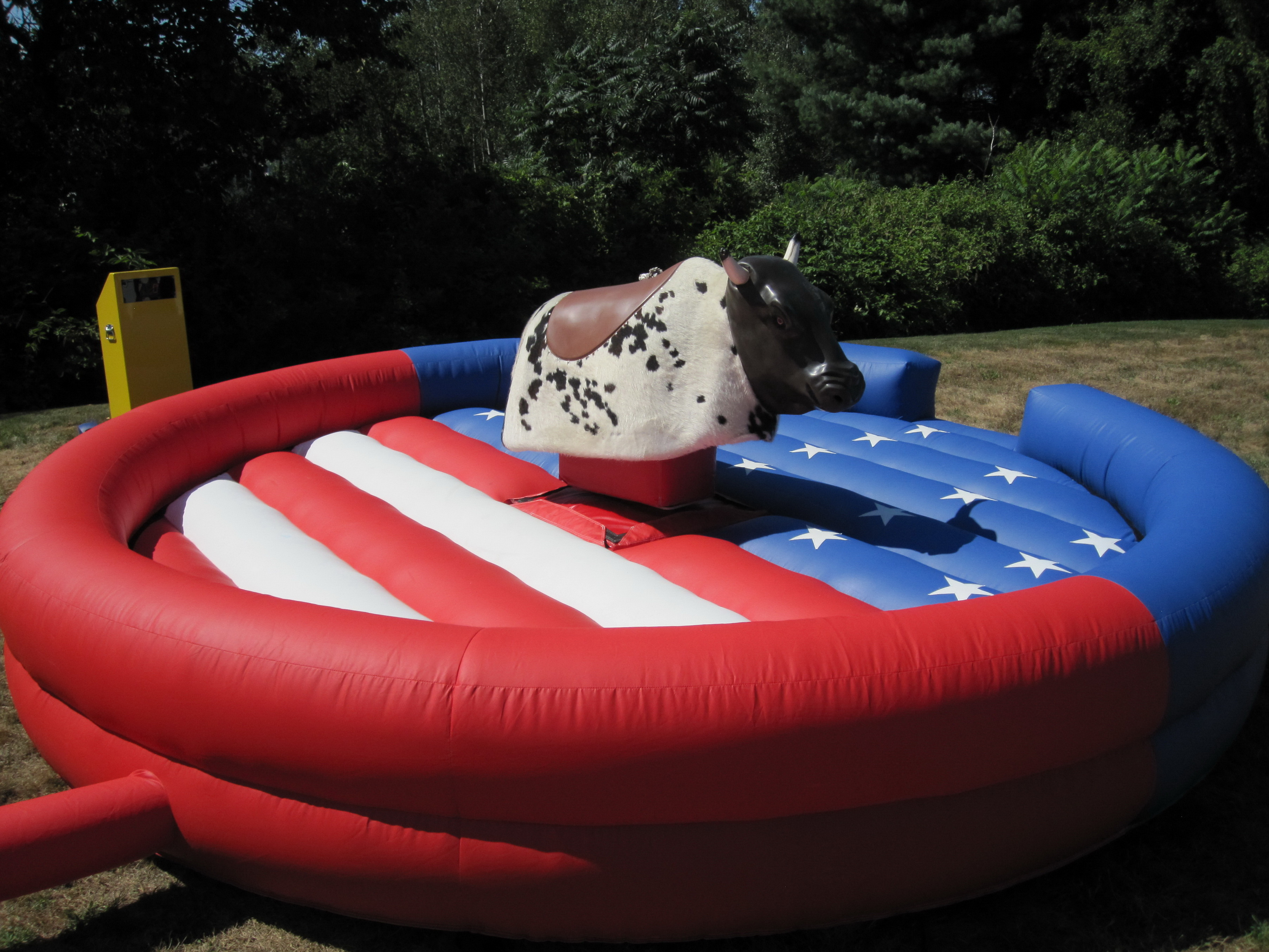 Pedro the Mechanical Bull